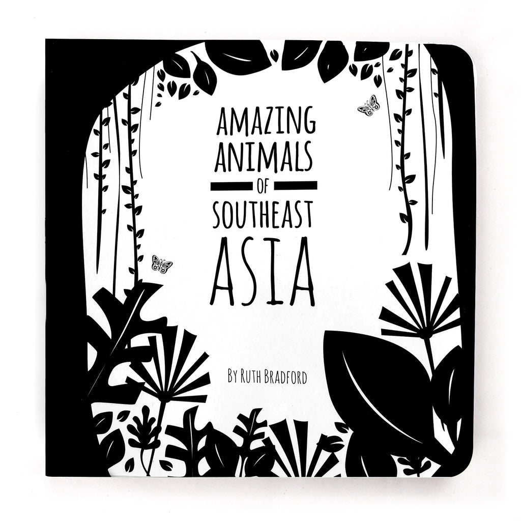 Amazing Animals Of Southeast Asia