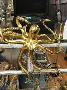 Decorative Shelf Octopus