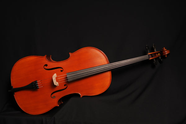 Reghin Master Cello