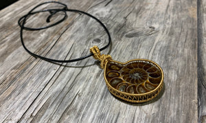 Ammonite Fossil wrapped in gold coloured brass (untarnishable) wire