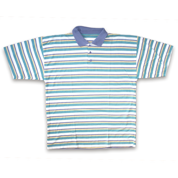 Vintage Stripe Polo Shirt Multicolor