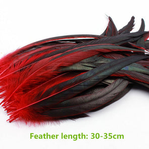 10Pcs/Lot Dyed Rooster Tail Feather Chicken Feather 30-35cm /12-14Inch - Cosplay Infinity