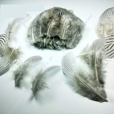 100pcs/lot 7-11cm, 3-4in Top Quality White Silver Pheasant Feathers Craft Jewelry Cosplay Accessories - Cosplay Infinity