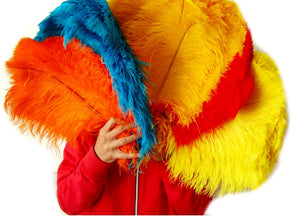 100pcs/lot Dyed Mixed Colors Ostrich Wing Plume Feathers