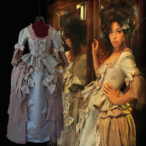 Marie Antoinette Day Court Regency Renaissance Gothic Medieval Gown Ball Dress