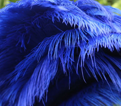 50pcs ostrich plume ostrich feathers 16-18inches/40-45cm royal blue feather high quality wedding decoration cosplay - Cosplay Infinity