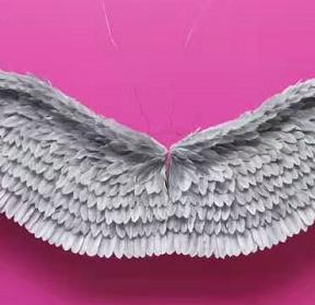 6ft to 9ft Gray white black green fairy wings angel wings wedding party decor props