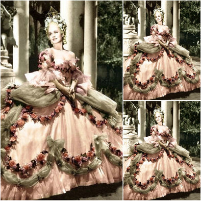 Custom Made Luxury Victorian Dresses Civil War dress Marie Antoinette Ball Gown