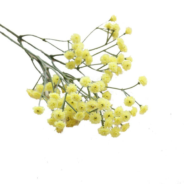 One Sprig of Pretty Artificial Flowers Silk Fake Flowers Baby's Breath Leaf Floral Crafts - Cosplay Infinity