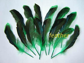 100pcs/Lot 8-12cm, 3-5in Mallard Green Duck Wing Feathers Quill Dyed Green Duck Feathers