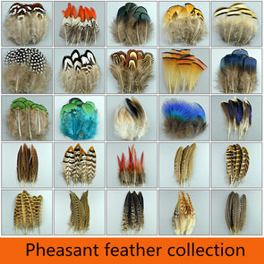 New 20pcs High Quality Beautiful Natural Feathers Pheasant Plume Diy Jewelry Cosplay Wings Heddress - Cosplay Infinity