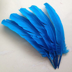 50pcs/lot Lake blue goose feather /Turkey feather 10-12inch, 25-30cm goose feather plumes cosplay