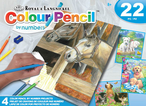 Colour Pencil by numbers - CLEARANCE