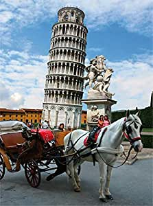 Tower of Pisa (Italy) - DTOYS 1000 piece jigsaw puzzle