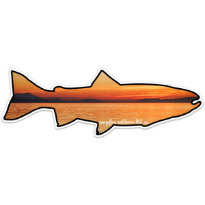 Sunset Lake Trout (8 in. x 2.73 in.)