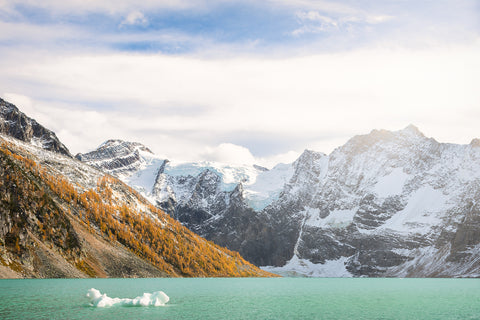 Glacier Babies, Lake of the Hanging Glacier, British Columbia