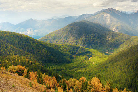 Rolling Mountains Pedley Pass In Fall, British Columbia, Canada 1 - Art Print
