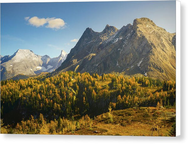 Bastille Mountain, Jumbo Pass In Fall, British Columbia - Canvas Print