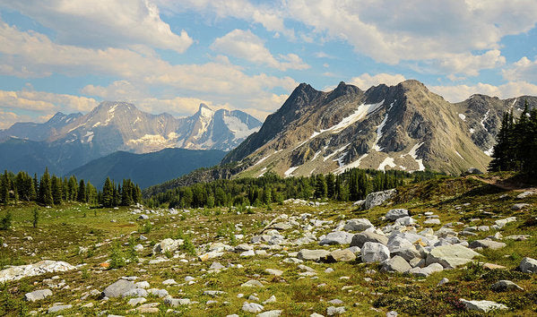 Bastille Mountain Landscape, Jumbo Pass, British Columbia - Art Print