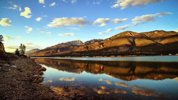 Columbia Lake, British Columbia, Reflection At Sunset - Art Print