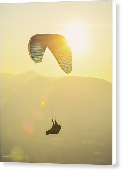 Flight At Sunset - Canvas Print