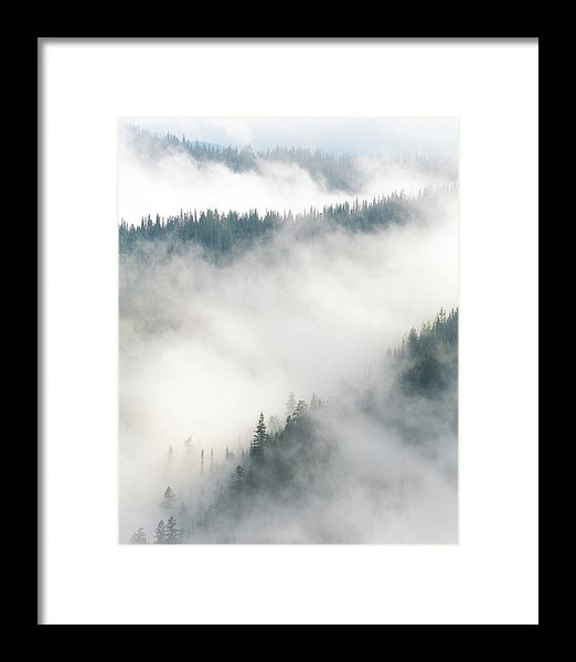 Forest Layers In Fog - Framed Print