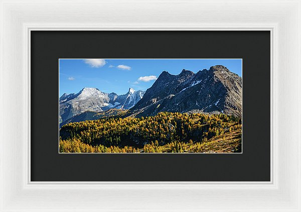 Jumbo Pass And Golden Larch, Purcell Mountains, British Columbia - Framed Print
