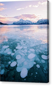 Methane Bubbles Frozen In Abraham Lake, Clearwater County, Alberta - Canvas Print
