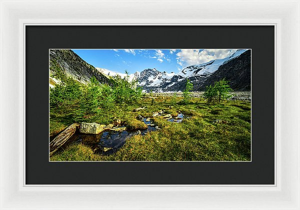 Mountain Meadow, Lake of the Hanging Glacier, British Columbia - Framed Print