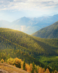 Rolling Mountains Pedley Pass In Fall, British Columbia, Canada - Art Print