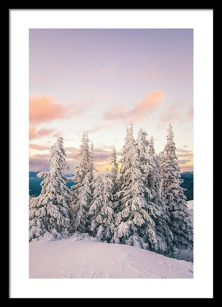 Snow Covered Trees At Sunset In Winter - Framed Print