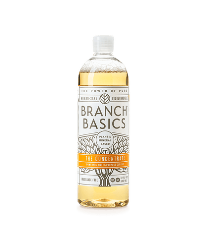 Branch Basics The Concentrate / Neighborhood Goods