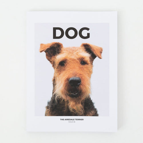Dog Issue 06 – The Airedale Terrier / Neighborhood Goods