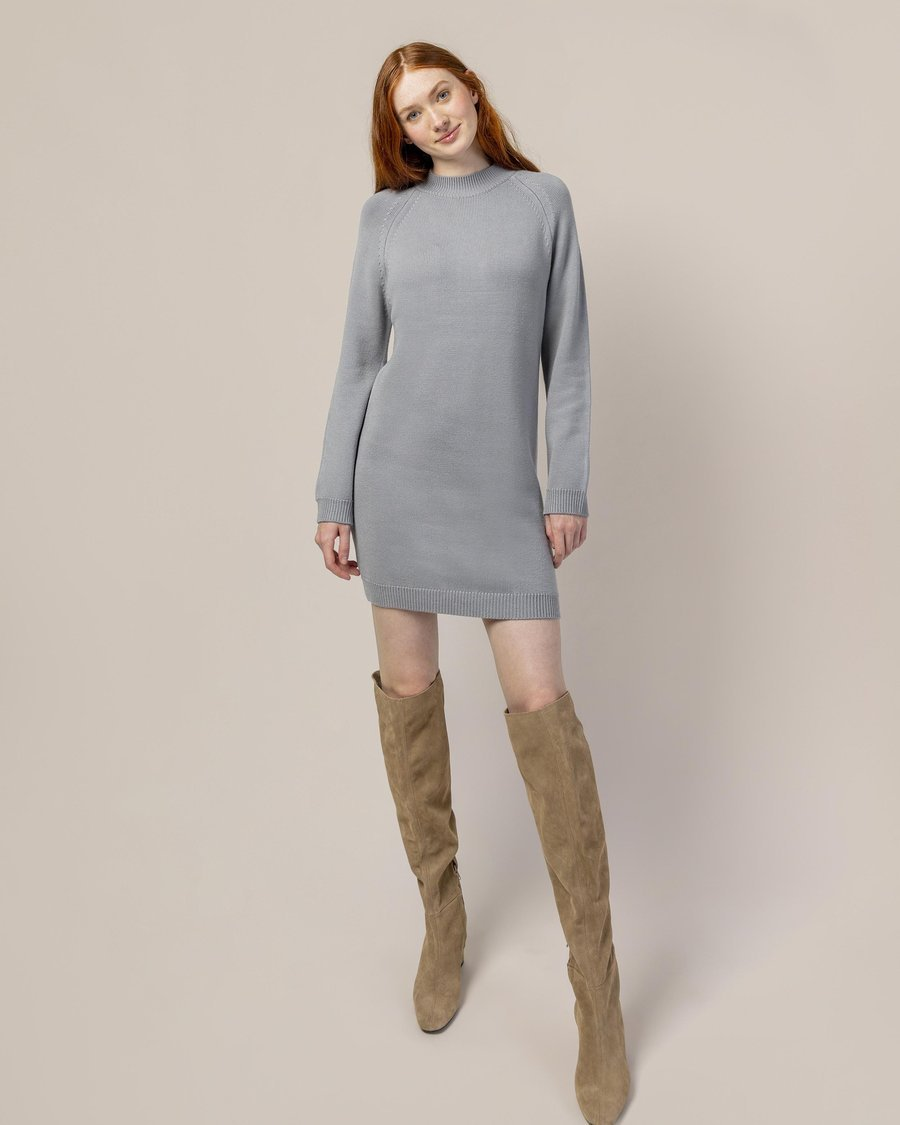 Modern Citizen Caye Crew Neck Mini Sweater Dress / Neighborhood Goods