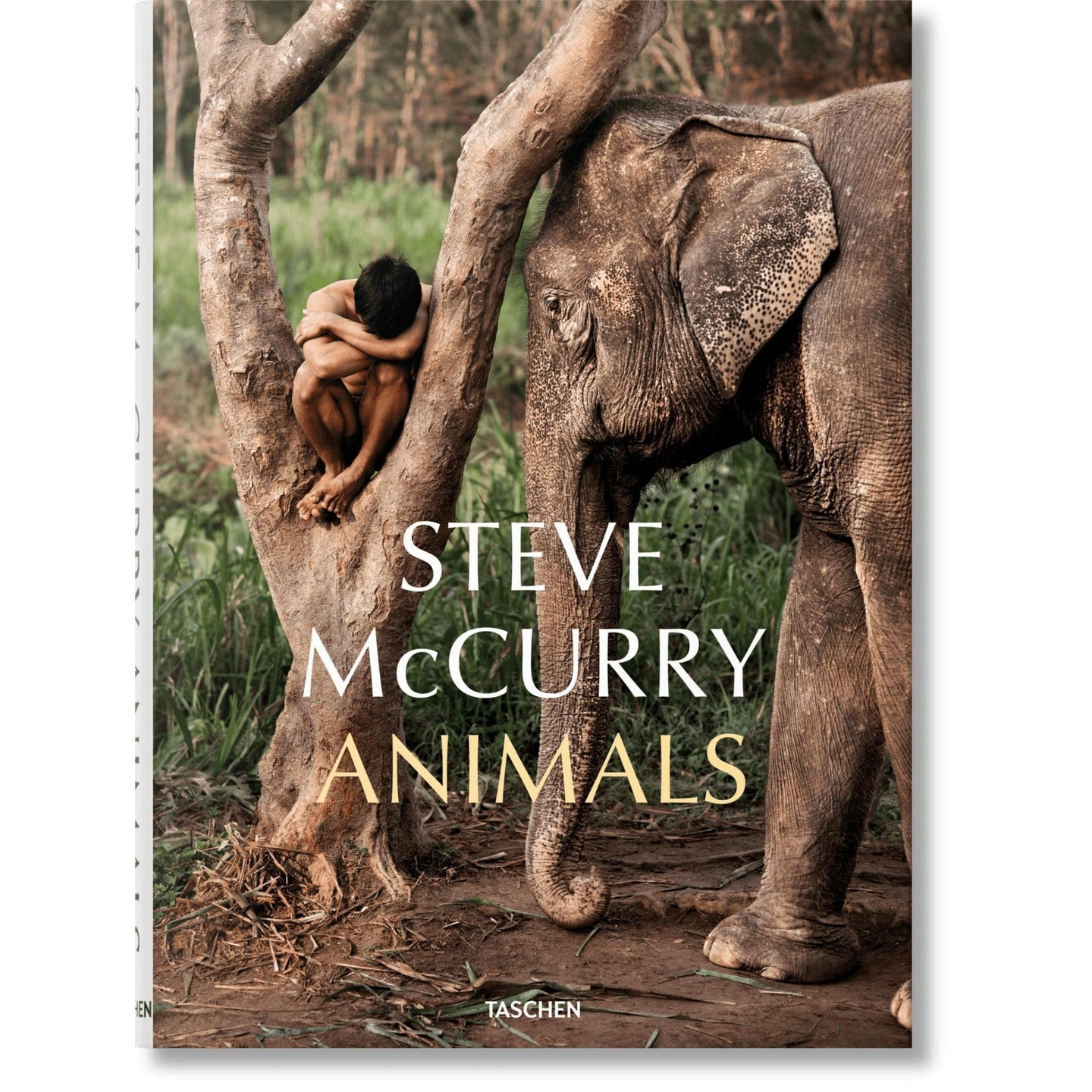 Taschen Steve McCurry. Animals / Neighborhood Goods