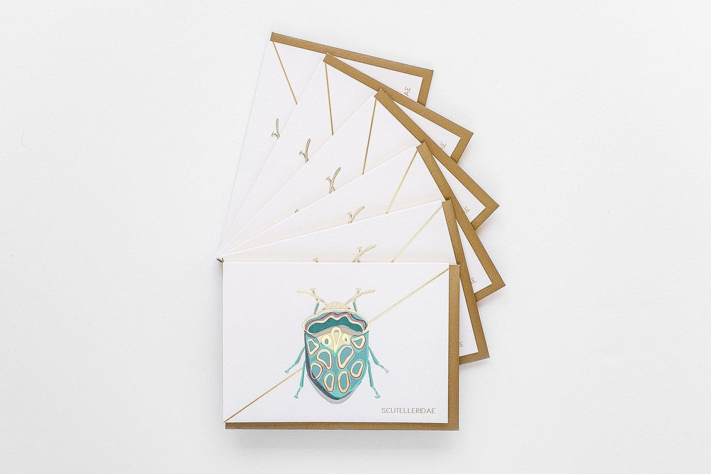 Teal Beetle Stationery Boxed Set / Neighborhood Goods