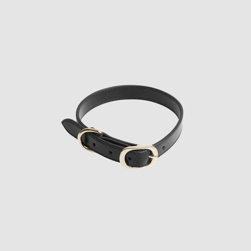The Daily Edited Black Medium Dog Collar / Neighborhood Goods
