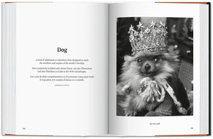 The Dog in Photography 1839–Today / Neighborhood Goods
