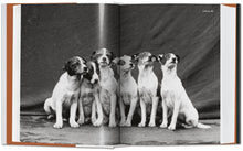 Load image into Gallery viewer, The Dog in Photography 1839–Today / Neighborhood Goods