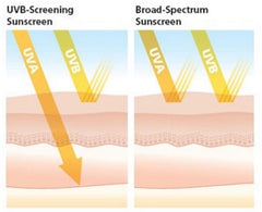 Broad Spectrum Sunscreen protects from UVA and UVB rays