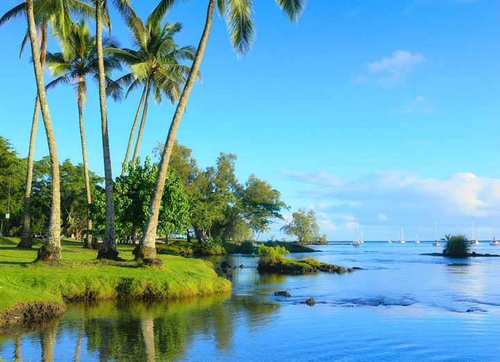 Best of the Best of Hilo Hawaii
