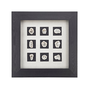 Dimond Home Achates Shadow Box