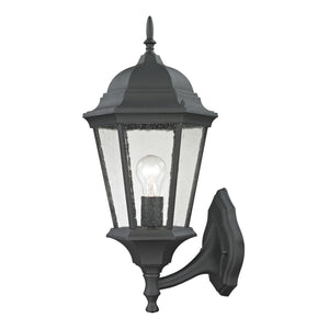 Thomas Temple Hill 1 Light Outdoor Wall Sconce In Matte Textured Black