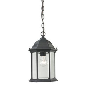 Thomas Spring Lake 1 Light Outdoor Pendant In Matte Textured Black