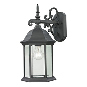 Thomas Spring Lake 1 Light Outdoor Wall Sconce In Matte Textured Black