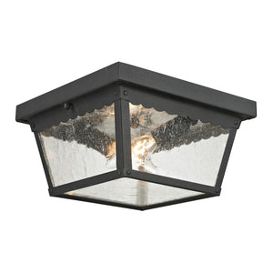 Thomas Springfield 2 Light Outdoor Flushmount In Matte Textured Black