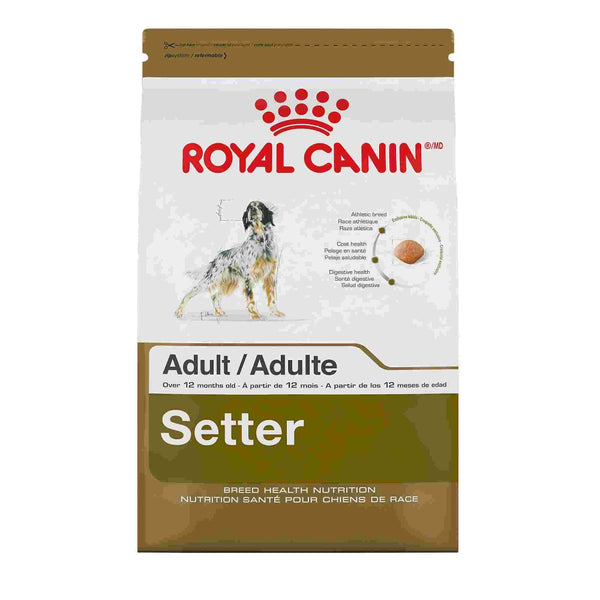 Royal Canin Adult Setter Dry Dog Food