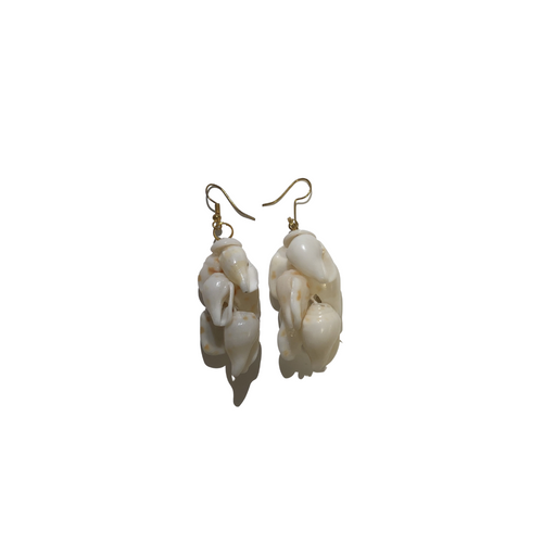 Ni'ihau Chunky 'Alilea Shell Earrings