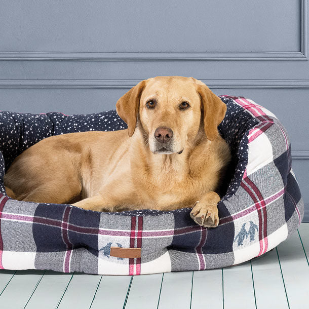 Finding The Best Dog Bed For Your Pet