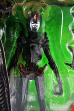 Alien VS Predator: Alien Warrior Figure
